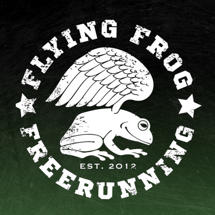Flying Frog Academy Logo and Branding
